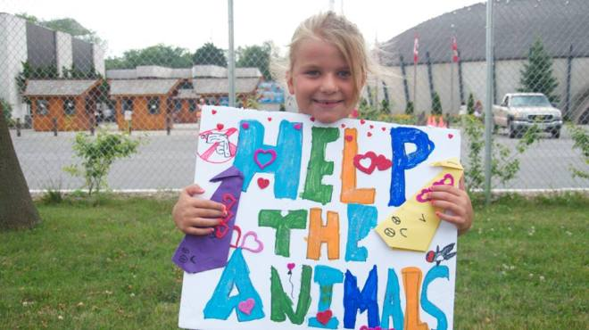 CALL FOR SUBMISSIONS: Marineland Animal Defense (M.A.D.) is compiling a zine for…